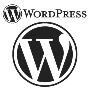 What You Need To Know About Using WordPress