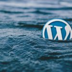How To Maximize Your Experience While Using WordPress