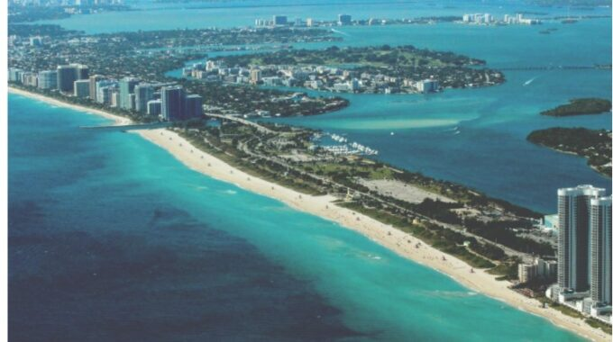 Miami Real Estate Agency: Start Your Price Career with CardinalMiami