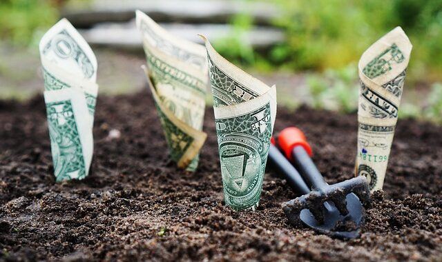 Passive Benefits of Investing With A Delaware Statutory Trust