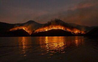 Why Are Bushfires in Australia so common?